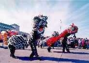 Lion Dancer-1